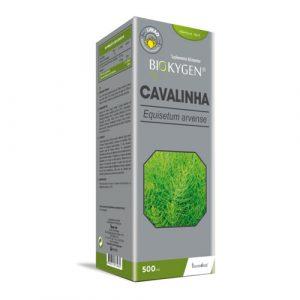 Cavalinha 500ml - Fharmonat