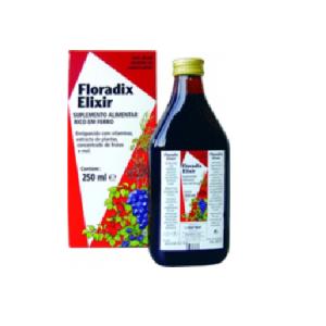 Floradix Elixir 250ml - Salus