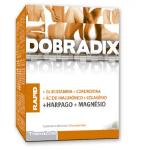 DOBRADIX RAPID 40 Comprimidos - Theralab
